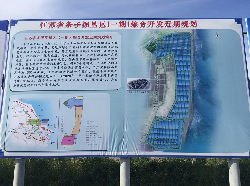 Billboards such as these describe forthrightly–yea, proudly–the planned transformation of the Dongtai mudflats.