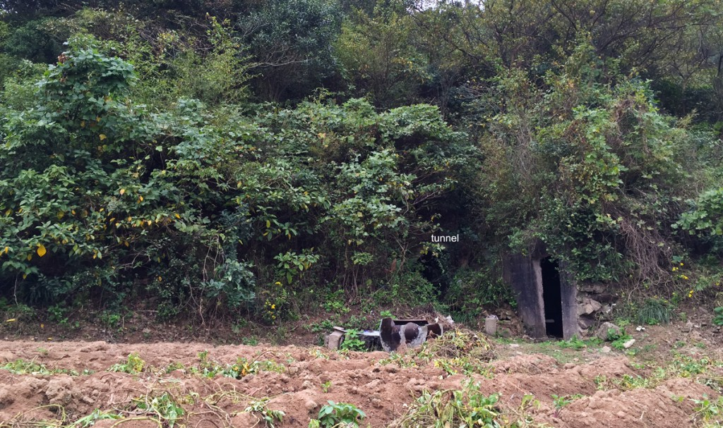 Another look at the crude gardens and secondary forest near Dabeishan Scenic Area on Sijiao Island. Note entrance to WWII-era tunnel.
