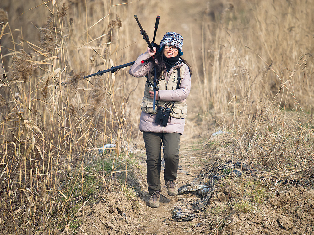 Elaine Du cheerfully hauls the spotting scope back to the car. The youngest member of the team, Elaine has an obvious enthusiasm for birding, is becoming handy with the telescope, and keeps accurate records.