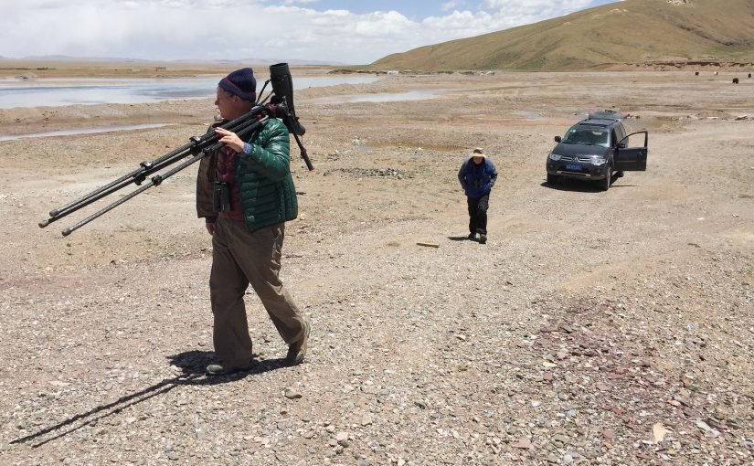 Michael Grunwell (L) carries spotting scope to view waterfowl on Eling Lake, near the source of the Yellow River in Guoluo Prefecture, Qinghai 3 July 2016. To the right is Mark Waters, Michael's old friend from England. In the background is our rented Mitsubishi Pajero. Craig Brelsford and Elaine Du were in Qinghai from 26 June to 21 August 2016. We spent the first two weeks of our expedition with Michael and Mark and noted 136 species. Photo by Craig Brelsford using iPhone 6.