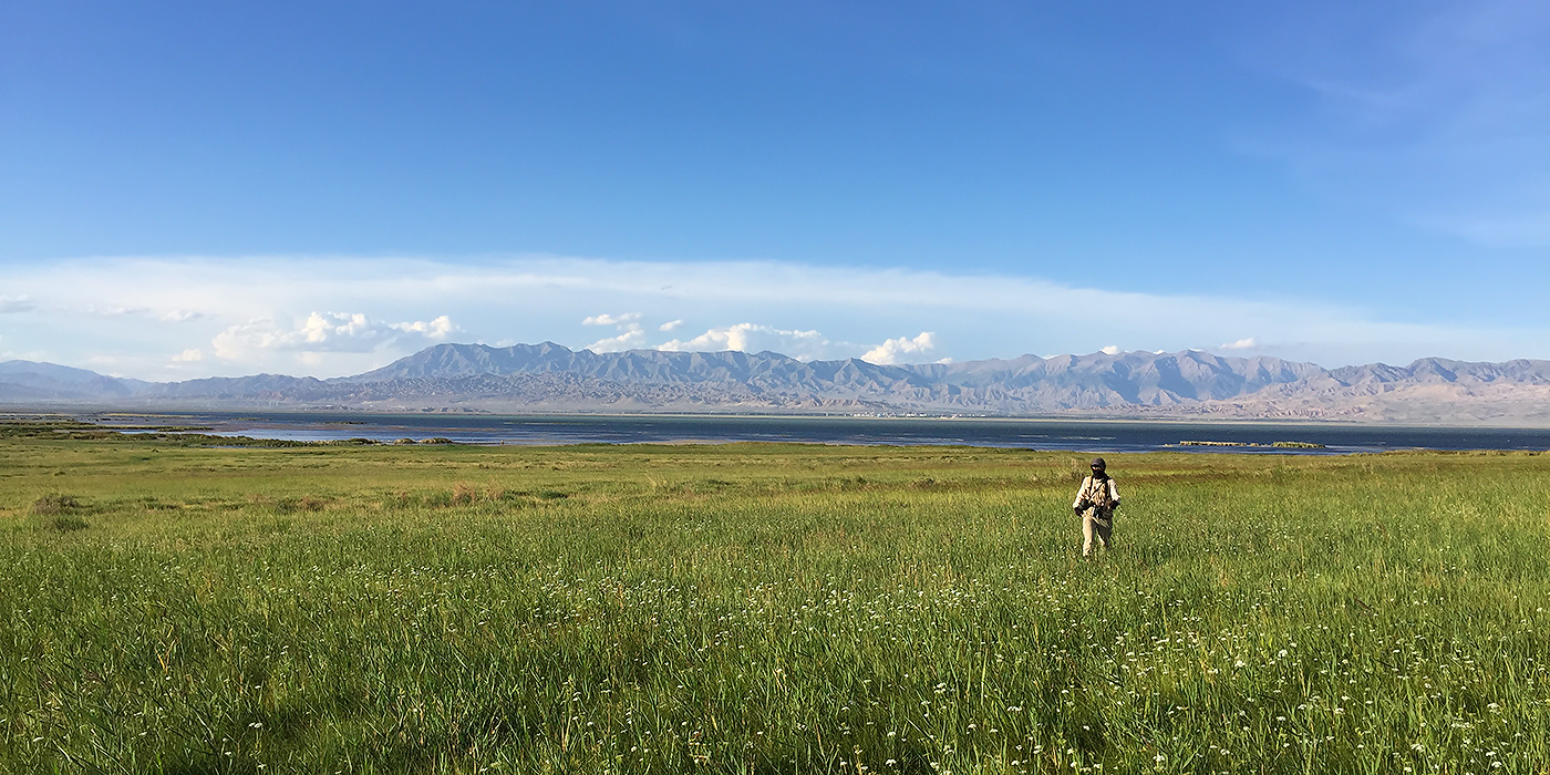 Elaine Du walks through a sea of grass near the south shore of Lake Xiligou, 16 Aug. 2016. In the distance the town of Wulan can be seen.