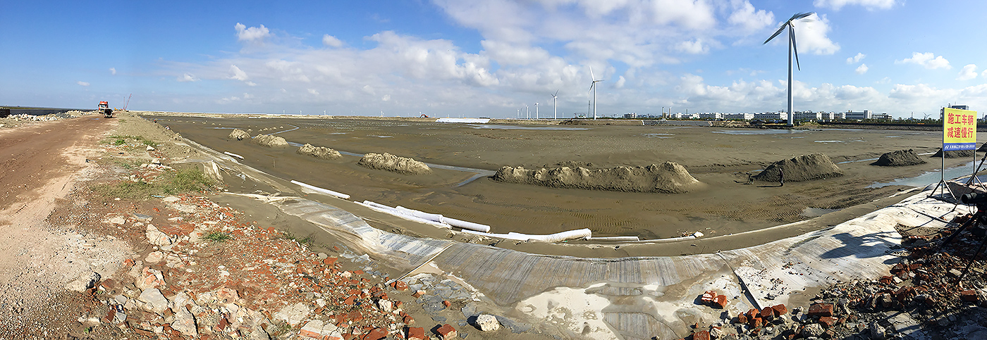 On Mon. 3 Oct. 2016 at Yangkou, at this strange and unlikely spot, with trucks roaring, windmills whirring, and earth-moving machines clanging, we found 10,300 shorebirds.