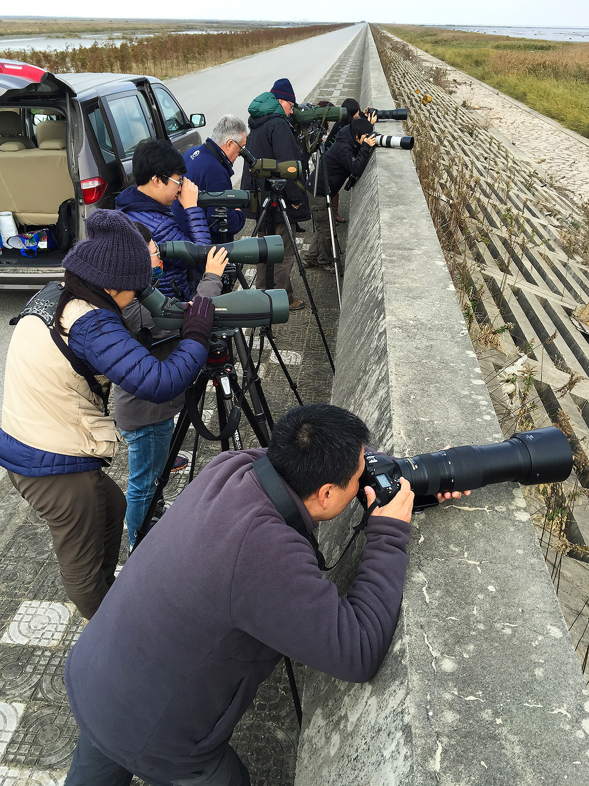 Shanghai birders viewing Baikal Teal. 10 Dec. 2016. Craig Brelsford.