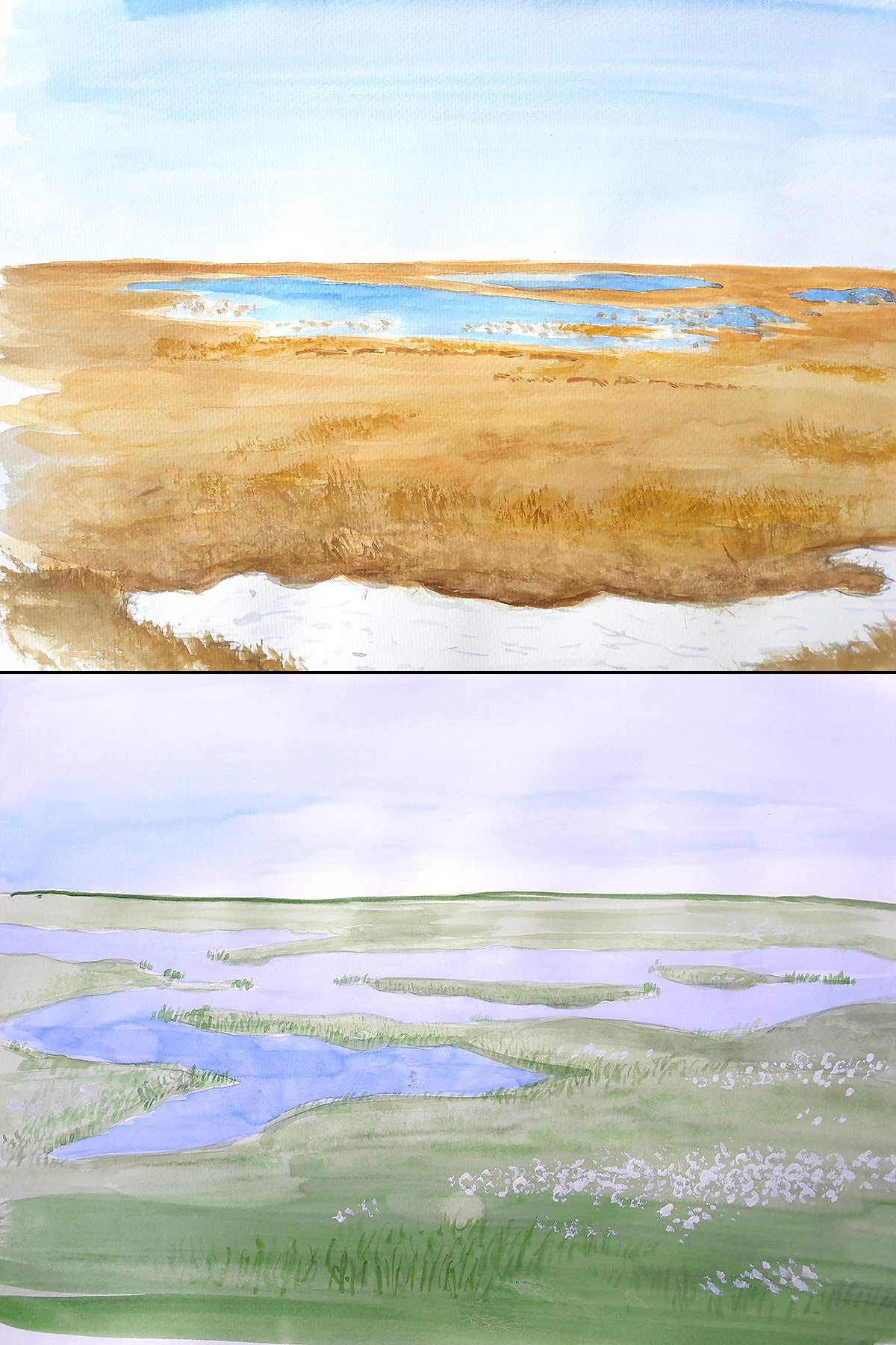 Tundra after snowmelt (June) and at height of summer (August). (Louis-Jean Germain)