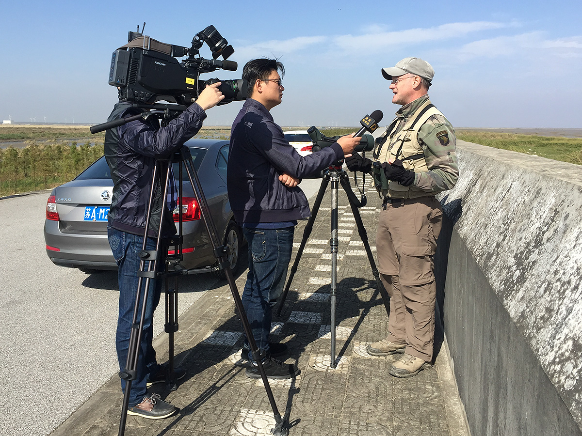 Craig talks to Pudong TV about the opportunities for conservation at Nanhui. Photo by Elaine Du.