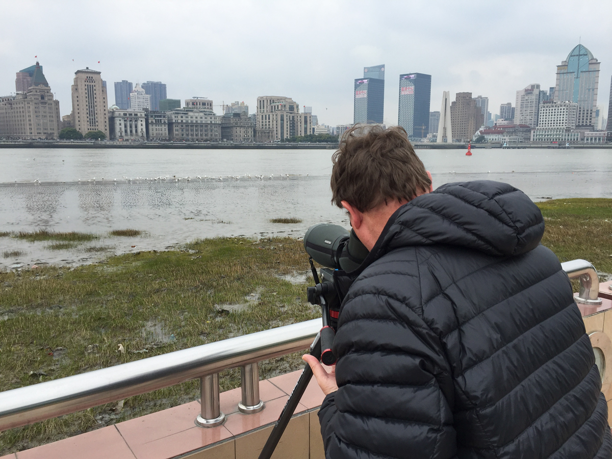 Michael Grunwell viewing gulls on Huangpu River, 18 March 2017. Photo by Craig Brelsford.