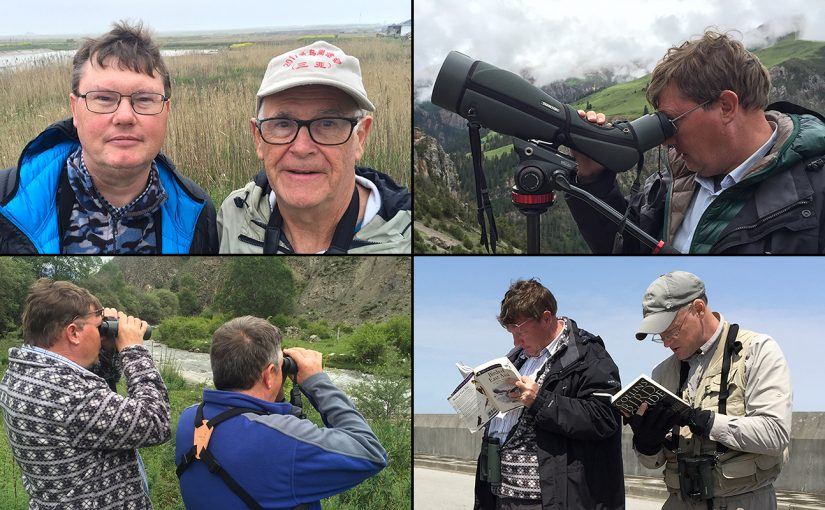 Clockwise from top L, the author of this post (L) with John MacKinnon at Cape Nanhui, Shanghai, 8 April 2017 (Craig Brelsford); using the spotting scope at Ga'er Monastery, Qinghai, 8 July 2016 (Craig Brelsford); with Craig Brelsford (R) at Nanhui, 4 April 2016 (Elaine Du); with old friend Mark Waters (R) in Huzhu County, Qinghai, 27 June 2016 (Craig Brelsford).