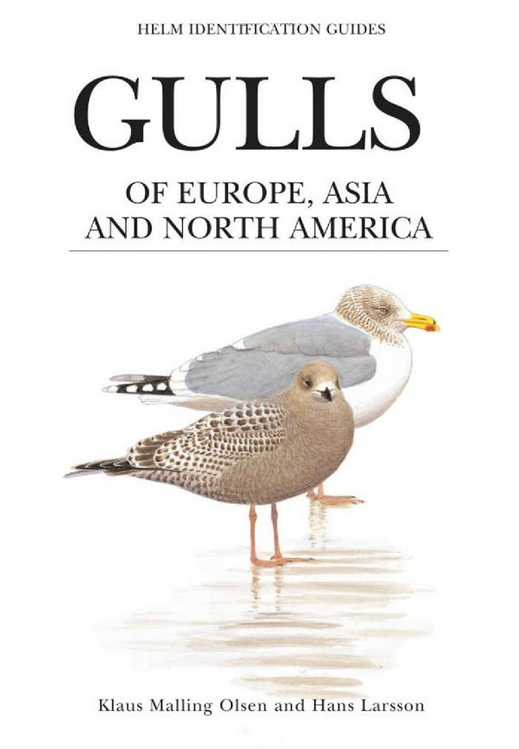 Cover to Malling Olsen, K. & Larsson H. 2004. Gulls of Europe, Asia and North America. Helm Identification Guides.