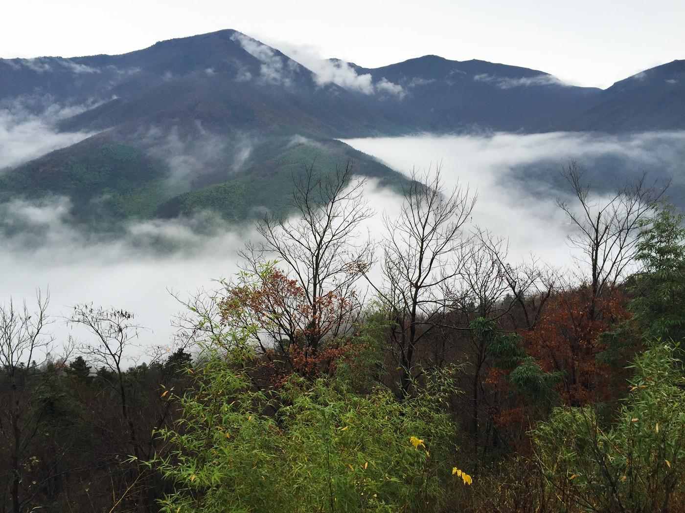 West Tianmu Mountain