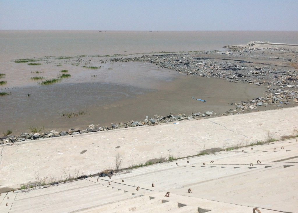 Typical mudflat scene at Dongtai. A mighty sea wall has impounded much of the former mudflat, but when the tide reaches the sea wall, shorebirds can still find refuge in the largely undeveloped reclaimed land behind.
