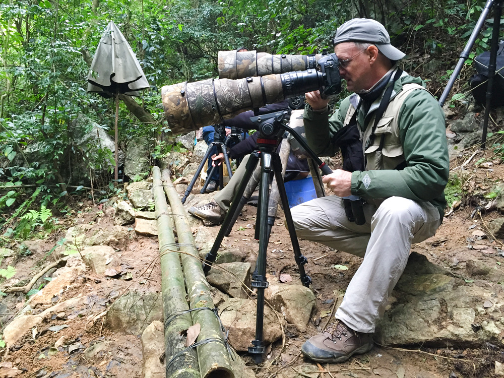 One of the easiest birding activities at Longheng is viewing Nonggang Babbler. Here I am at Mr. Lu's Nonggang Babbler setup. Photo by Elaine Du.