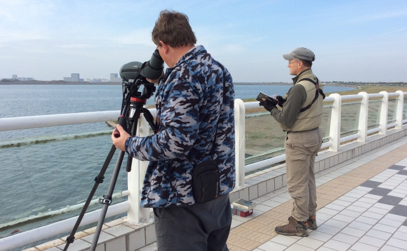 While Craig Brelsford consults Collins Bird Guide, Michael Grunwell uses Craig's Swarovski ATX-95 spotting scope to view Greater Scaup. Dishui Lake, Shanghai, 28 Nov. 2015. Photo by Elaine Du.