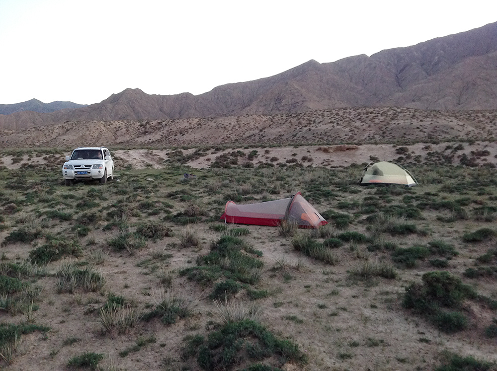 Camp in desert along Wūlánshān-Huāshíxiá Highway, Qinghai. Elev. 3500 m. 16 July 2014.