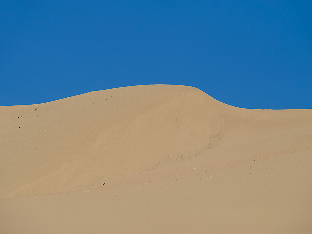 Sand dunes at Húyánglín Zìrán Bǎohùqū W of Golmud, 14 July 2014.