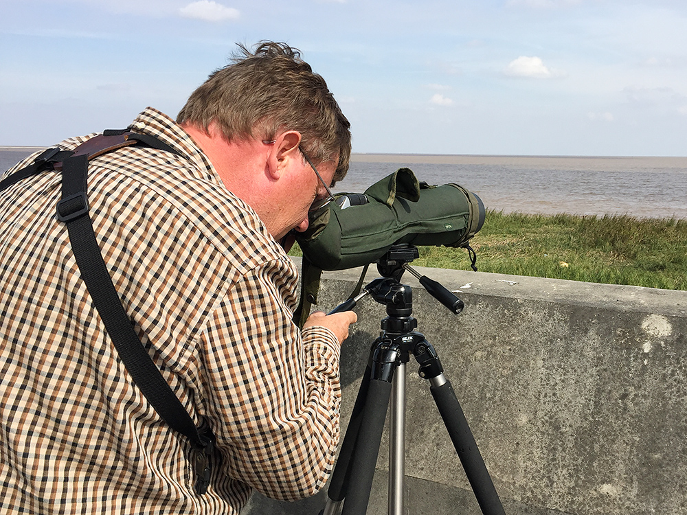 Michael Grunwell at Nanhui, Shanghai, 31 Oct. 2015. A birder as enthusiastic as he is knowledgeable, Michael was our major birding partner in 2015. We went thousands of kilometers together, traveling by air, train, car, and foot to birding locations in five provinces. A teacher by profession, Michael freely distributes his bird knowledge, built up over four decades. Michael introduced us to Emeifeng and proposed the Nonggang Babbler trip. We, in turn, had the pleasure of showing Michael various sites in the Shanghai region after Michael and his family moved to Shanghai from Nanchang in August 2015.
