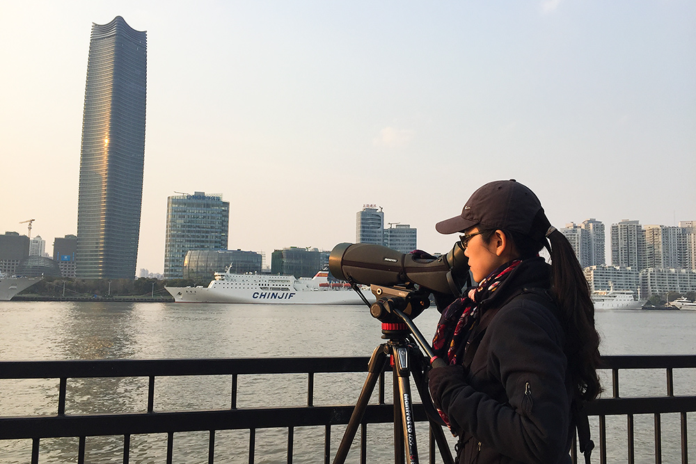 Elaine Du birding Huangpu River from Lujiazui side, 25 March 2016.