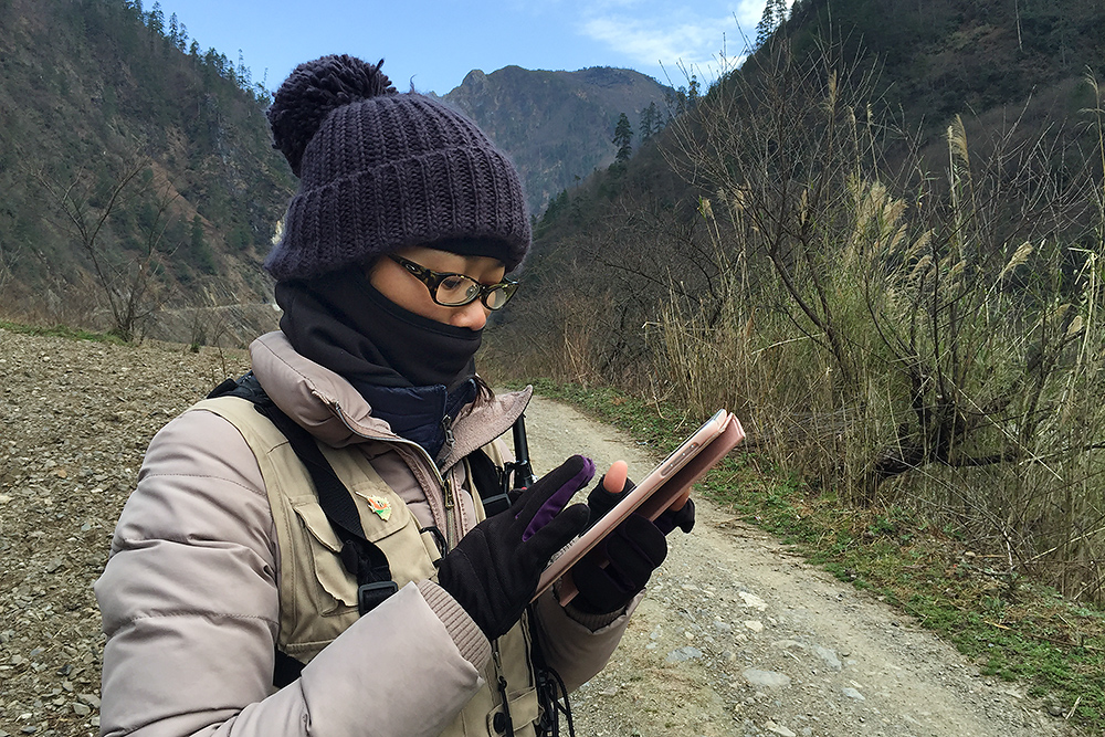 Elaine Du updating our bird list. To make list-keeping easier, Elaine has created an Excel/Numbers file with all 1400+ birds in China arranged in taxonomic order with names in English, Latin, Chinese, and Pinyin.