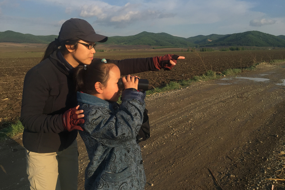Elaine's niece Lisa Li (R) tries out Elaine's Zeiss Conquest HD 8 x 42 binoculars while her aunt shows her a quartet of Little Ringed Plover in the fields behind Dawucun, 31 May 2016.
