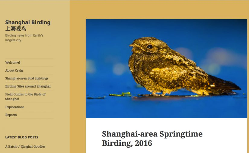 "Screenshot of our newly published report, ""Shanghai-area Springtime Birding, 2016,"" now available in the Reports section of shanghaibirding.com."