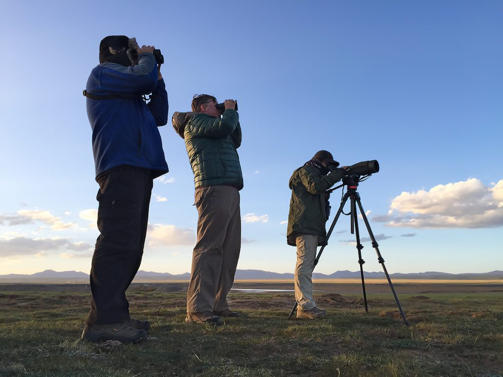 L-R: Mark Waters, Michael Grunwell, and Elaine Du watching Himalayan Vulture at sunset on 3 July 2016 in Maduo County, Qinghai. Yellow River just visible at their feet. As soon as the sun set on 3 July, our team turned its attention to the heavens, enjoying in the clear Tibetan Plateau air stunning views of the Milky Way, the rings of Saturn, and the moons of Jupiter. Photo by Craig Brelsford using iPhone 6.