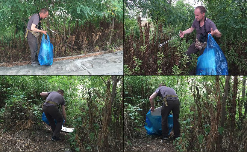 Kai Pflug picks up litter at Microforest 1, Nanhui, Shanghai, 11 Sept. 2016. Photos by Craig Brelsford.